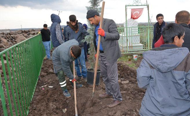 Şehit Orhan İrkarlı'nın Mezarında Düzenleme