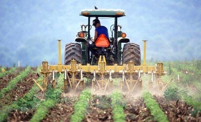 Bakan Çelik: Tarımsal ve Hayvansal Zararların Tümü Sigorta Kapsamına Alınacak