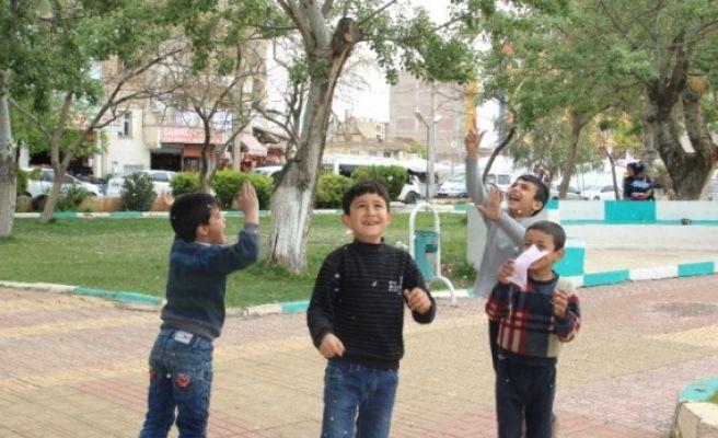 Çocukların Ağaçlardan Düşen Beyaz Polenlerle Kar Keyfi