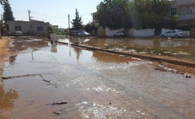 Suruç'ta Taban Suyu Yükseldi, Yolları Su Bastı