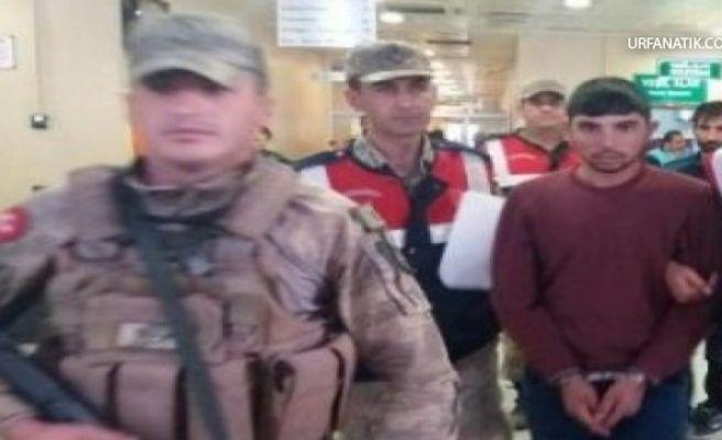 Şanlıurfa'da Sınırdan Suriye'ye Geçmeye Çalışan 2 Kişi Yakalandı