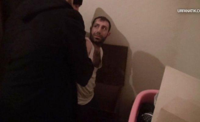 Aranan Uyuşturucu Taciri Çeyiz Sandığında Yakalandı