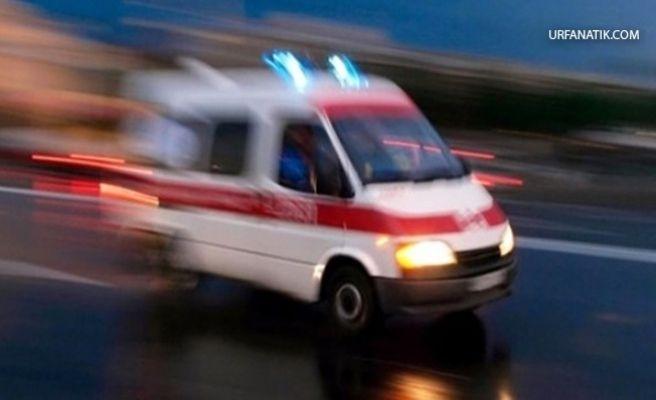 Ceylanpınar'da Trafik Kazası: 1 Yaralı