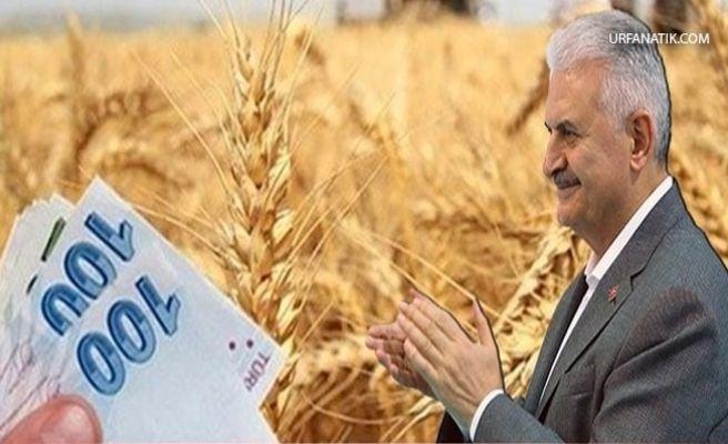 Başbakan'dan Çiftçiye Müjde!