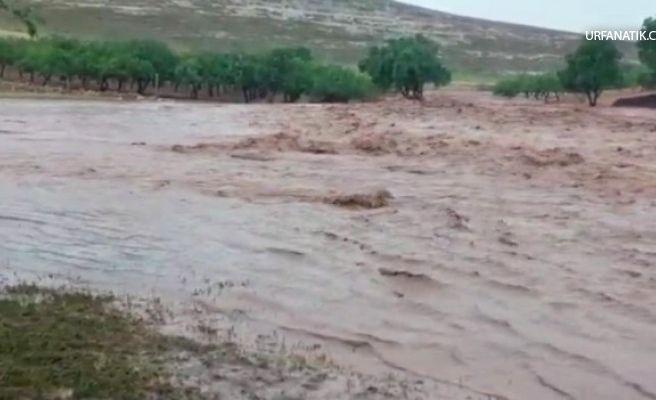 Sel Suları Nehir Gibi Aktı
