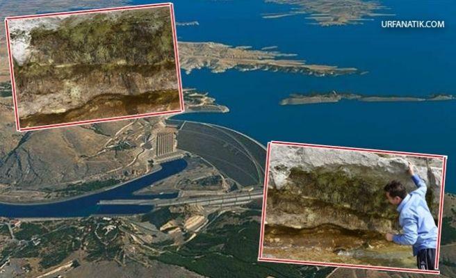 Atatürk Barajı'nda Sular Çekilince Paleolitik Resimler Bulundu