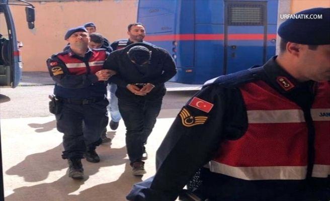 """Urfa'da Telefon Dolandırıcılığı"""" Suç Örgütüne Operasyon"""