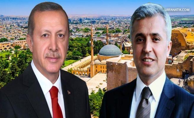 Erdoğan'dan Eski Urfa Vekil'ine İstanbul Görevi