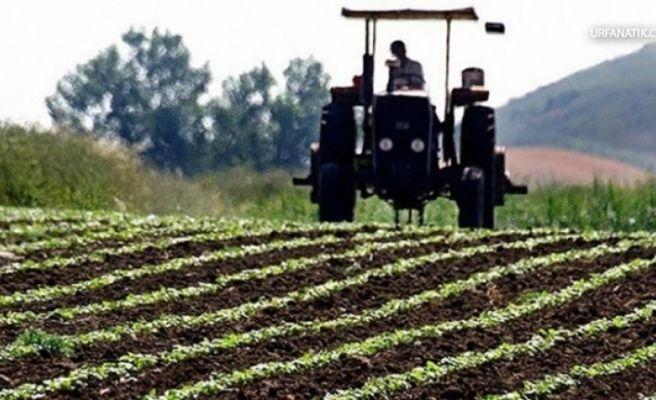 Çiftçilere Müjde! Bugün Hesaplara Yatıyor