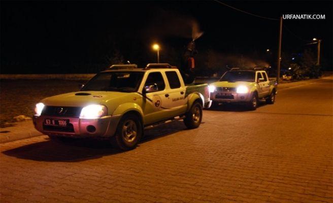 Harran'da Haşereyle Mücadele Dört Bir Koldan Devam Ediyor