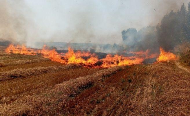 300 dönüm anız yeri alev alev yandı