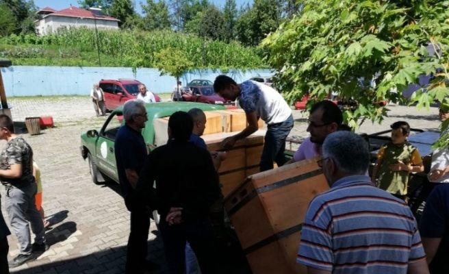 Çarşamba'da arı kovanı dağıtımı