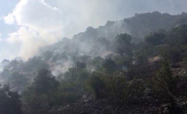 Gölbaşı'nda ormanlık alan yandı