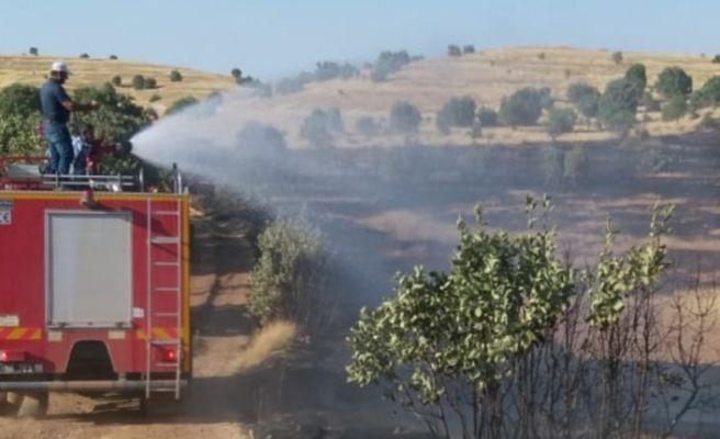 Gercüş'te orman yangını