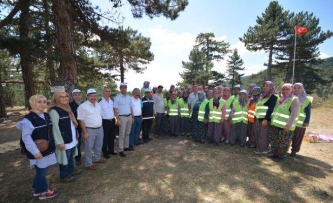 Vali, Emet'te ormancılık faaliyetlerini ve yangın müdahale tedbirlerini inceledi
