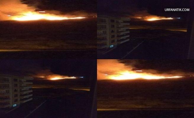 Karaköprü'de Korkutan Anız Yangını