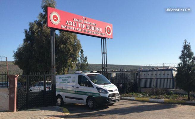 Urfa'da Yolcu otobüsün çarptığı yaya hayatını kaybetti
