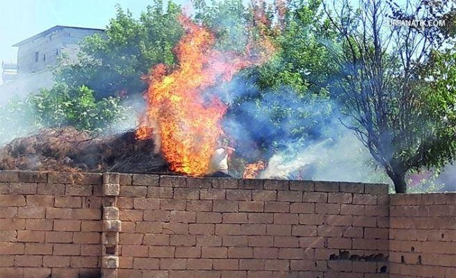 Akçakale'de Odunlukta Yangın!