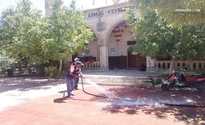 Viranşehir Belediyesi'nden Cami Temizliği