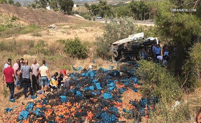 Tarım İşçileri Kaza Yaptı: Çok Sayıda Ölü Ve Yaralı Var!