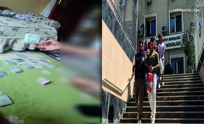 Şanlıurfa'da  5 milyon Liralık Vurgun Yapan Çete Çökertildi