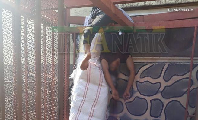Eyyübiye'de Asansör Boşluğuna Düştü: Ağır Yaralandı!