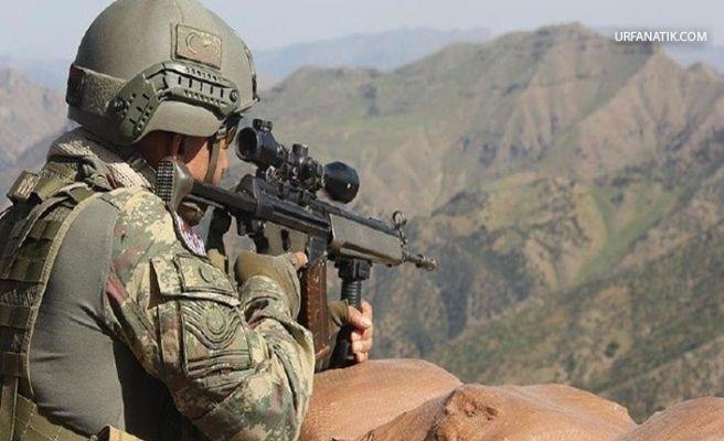 Suruç'ta Terör Operasyonu 1 Gözaltı