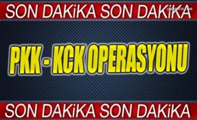 Şanlıurfa'da Dev Operasyon Çok Sayıda Gözaltı Var