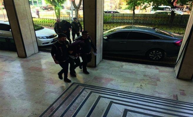 Telefon Dolandırıcıları Şanlıurfa'da Yakalandı!