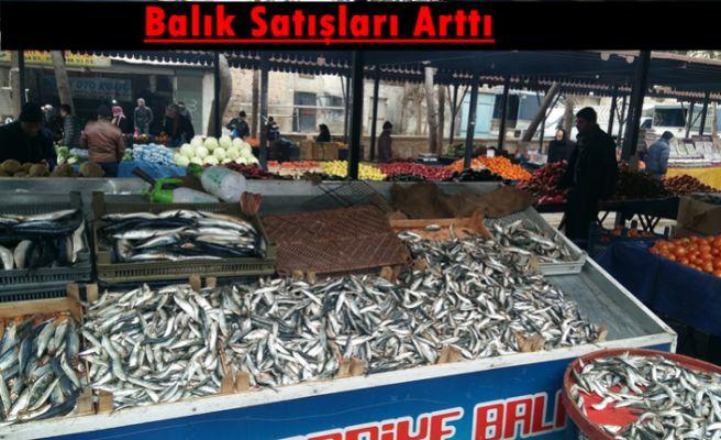 Havaların Soğumasıyla Birlikte Balık Satışları Arttı