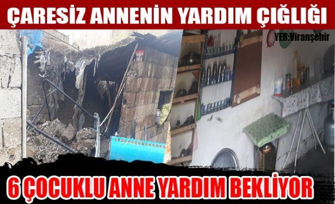 Viranşehir'de Eşi Evi Tekeden 6 Çocuklu Bir Anne Yardım Eli Bekliyor