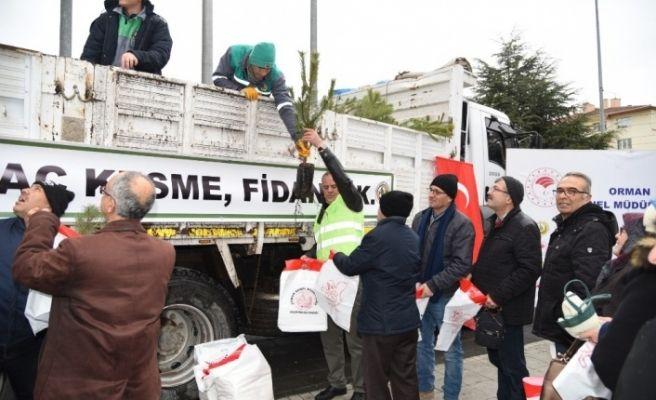 """Eskişehir'de """"Yeni yıla ağaç keserek değil fidan dikerek girelim"""" kampanyası"""