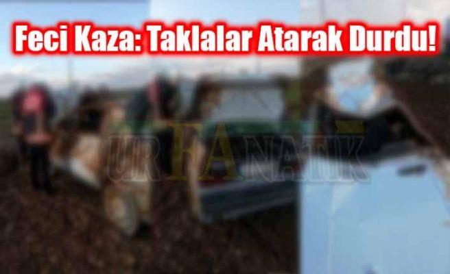 Akçakale Ceylanpınar Yolunda Kaza: 2 Yaralı!