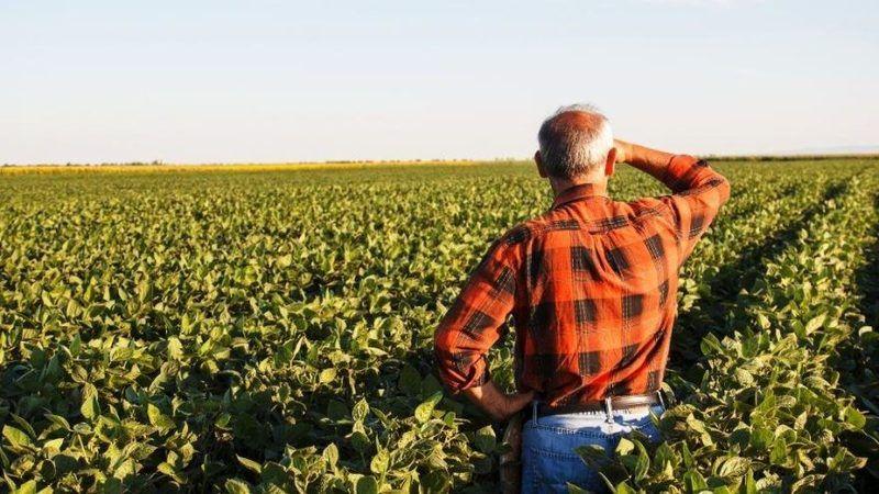 Bakan'dan 57 ilde bulunan çiftçilere müjde!