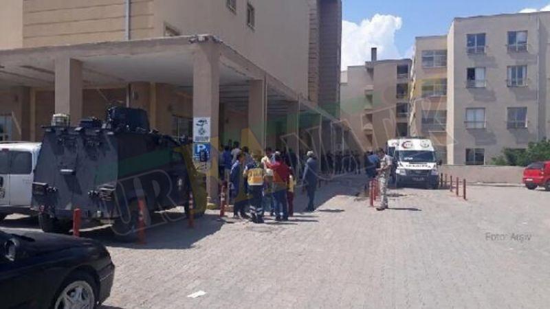 Urfa'da taşlı, sopalı kavga: 5 yaralı