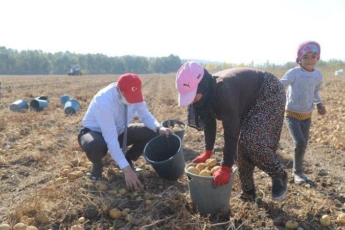 Sivas Valisi Urfalı tarım işçiler için talimat verdi