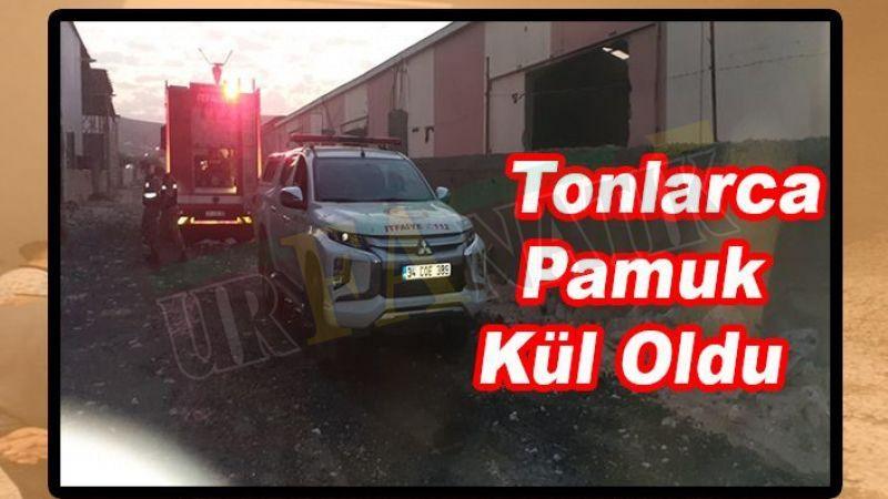 Şanlıurfa'da Pamuk fabrikasında korkutan yangın!