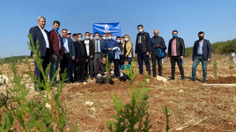 DEVA Partisi fidanları toprakla buluşturdu