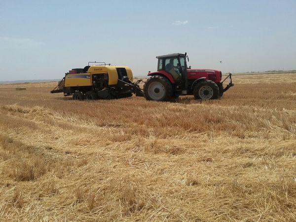 Urfa'da hasadın karşılığı samanla ödeniyor