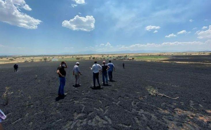 Urfa'da 150 dönümlük arazi cayır cayır yandı!