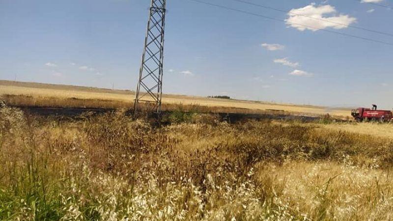 Urfa'da ekinler yanmaya başlayınca seferber olundu!