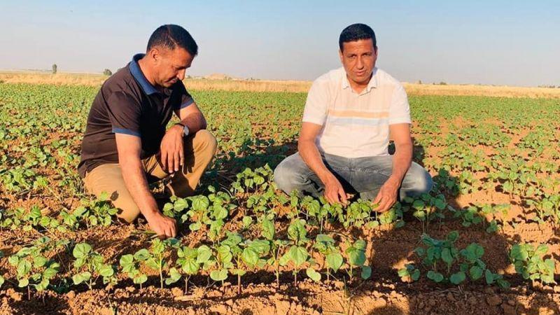Urfa'da değişmeyen manzara