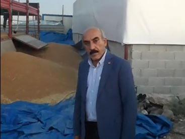 Bomba iddia: Şanlıurfa'da çiftçinin ekinlerine el konuldu!