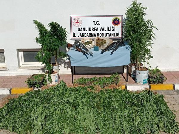 Jandarmadan, Urfa'nın iki ilçesinde nefes kesen operasyon!