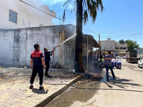 Urfa'da yol kenarındaki ağaç bir anda yandı!