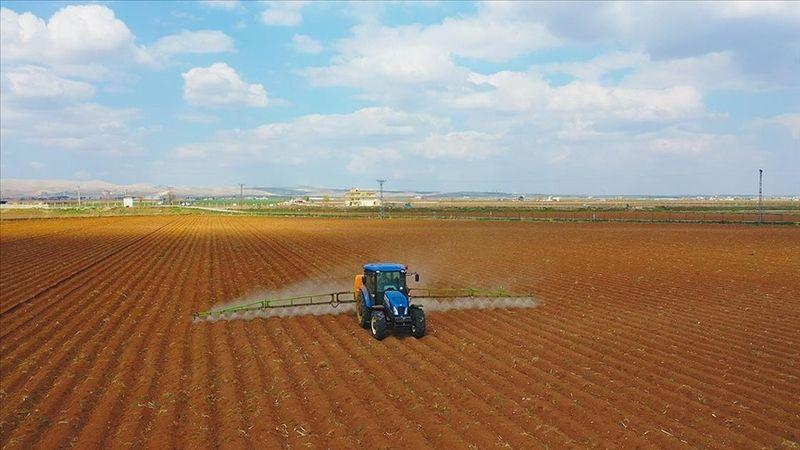 Urfalı çiftçiler müjde! 18 Haziran'dan itibaren ödenecek