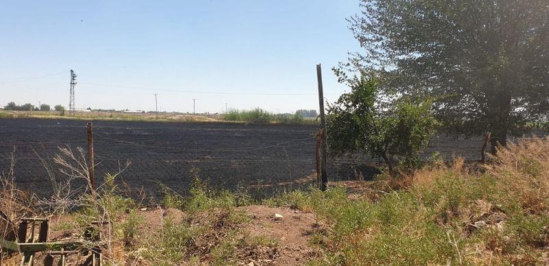 Urfa'da bir türlü önlenmeyen yangınlar