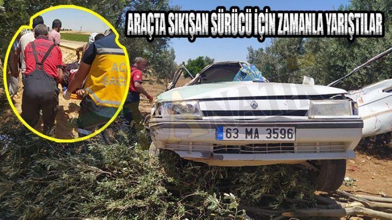 Urfa'da otomobil ağaçlık alana daldı: 1 yaralı