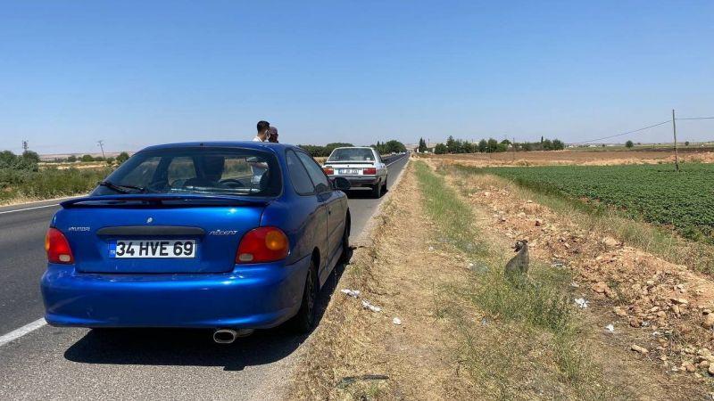 Şanlıurfa'da vatandaşlar seferber oldular