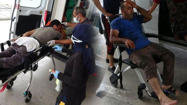 Kurban bayramında ilk günün bilançosu: 5 bin 825 yaralı